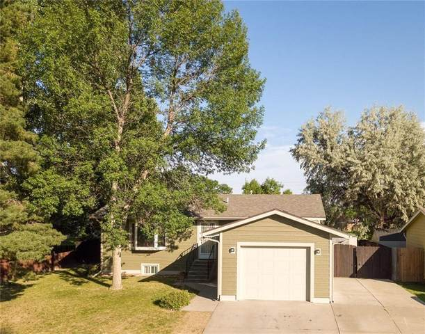739 Briar Place, Billings, MT 59102 (MLS #309148) :: Search Billings Real Estate Group