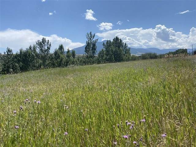 Lot 1A Beartooth Mountain Estates, Billings, MT 59068 (MLS #309327) :: The Ashley Delp Team