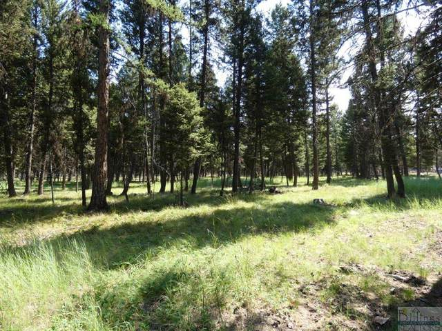 3214 Hwy 83, Seeley Lake, Other-See Remarks, MT 59868 (MLS #310448) :: The Ashley Delp Team