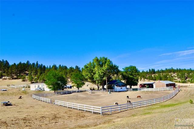 3841 Us Highway 87 South, Roundup, MT 59072 (MLS #311032) :: The Ashley Delp Team