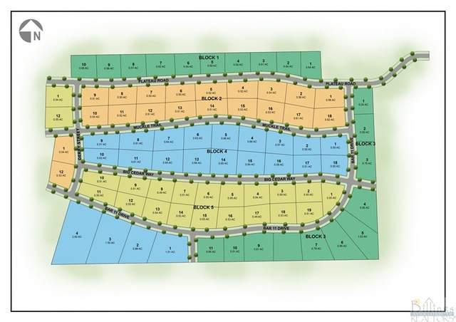 Lot 16 Blk 5 Bar 11 Drive, Billings, MT 59105 (MLS #313232) :: Search Billings Real Estate Group