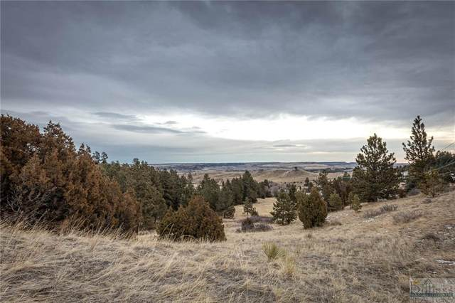 TBD Us Highway 87 E, Billings, MT 59101 (MLS #314921) :: MK Realty