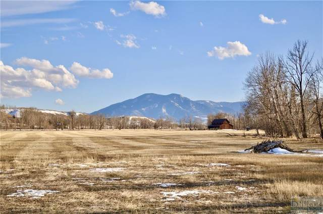 300 2 Mile Bridge Road, Red Lodge, MT 59070 (MLS #316888) :: The Ashley Delp Team