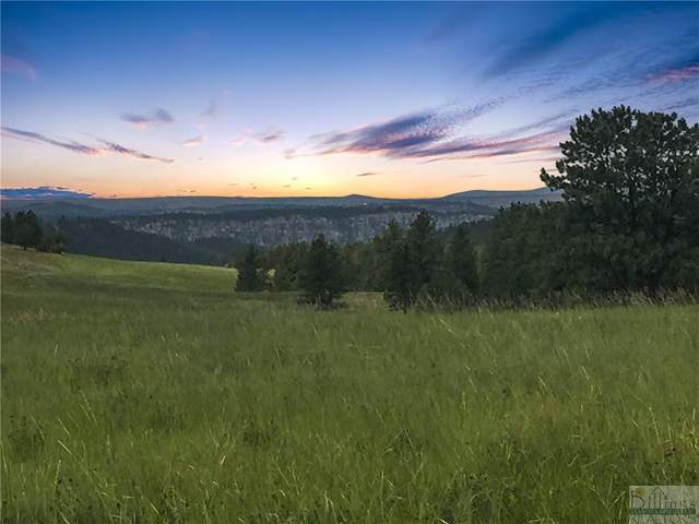 Lot 7 Shane Ridge Rd, Columbus, MT 59019 (MLS #317122) :: MK Realty