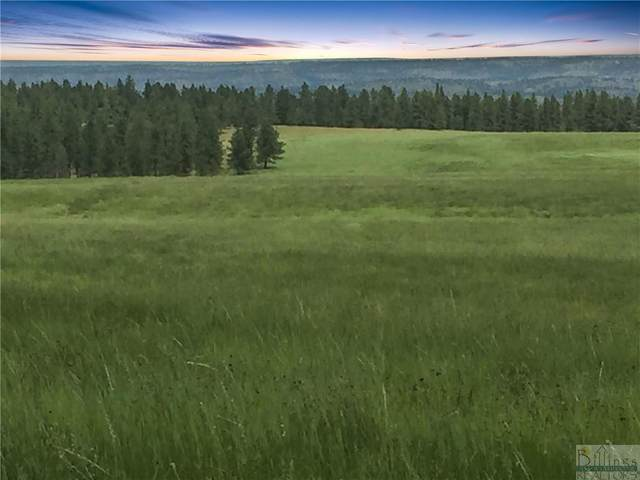 Lot 6 Shane Ridge Rd, Columbus, MT 59019 (MLS #317123) :: MK Realty