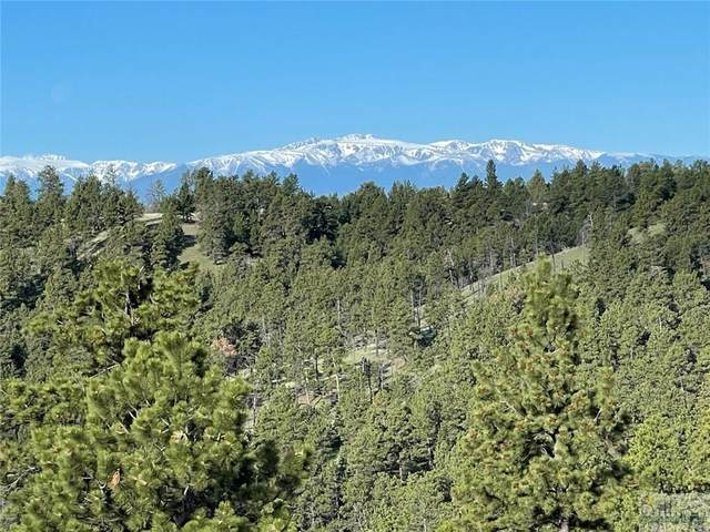2 High Pines Bluff, Columbus, MT 59019 (MLS #318279) :: Search Billings Real Estate Group