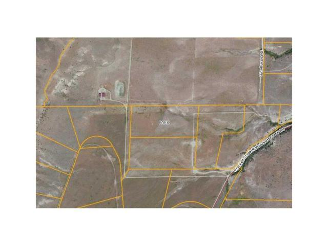 NHN Brackett Creek Road Lot 2 #1, Other-See Remarks, MT 59018 (MLS #241132) :: Realty Billings