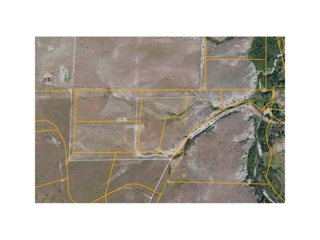 NHN Brackett Creek Road Lot 4 #1, Other-See Remarks, MT 59018 (MLS #241134) :: Realty Billings