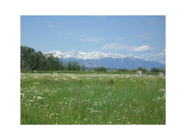000 Willow Creek Road, Red Lodge, MT 59068 (MLS #251758) :: Realty Billings