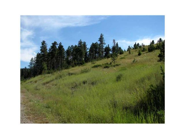 218 Juniper Road Tract 18, Roundup, MT 59072 (MLS #254530) :: Realty Billings