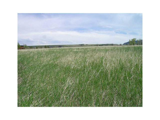LOT 36 Meadow Circle #36, Red Lodge, MT 59068 (MLS #261127) :: The Ashley Delp Team
