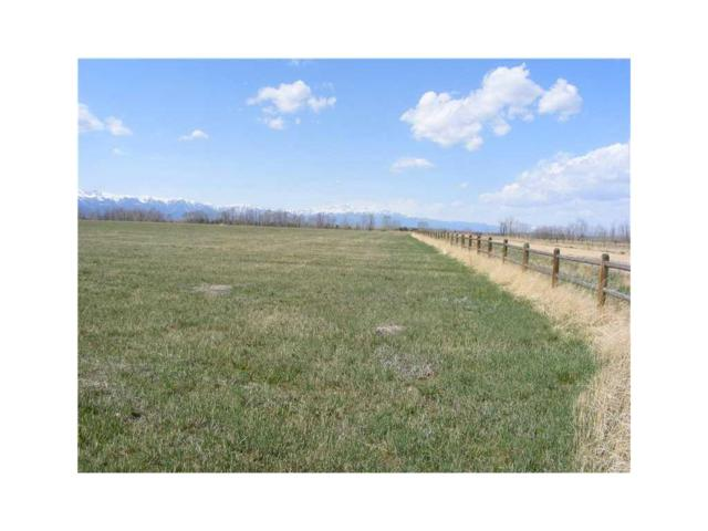 LOT 1 Clear Creek Road #1, Roberts, MT 59070 (MLS #262824) :: Realty Billings