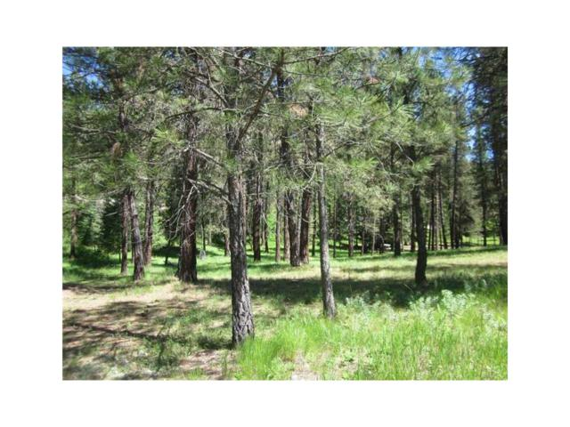 TBD Warren Road, Libby #003, Other-See Remarks, MT 59923 (MLS #262917) :: Realty Billings