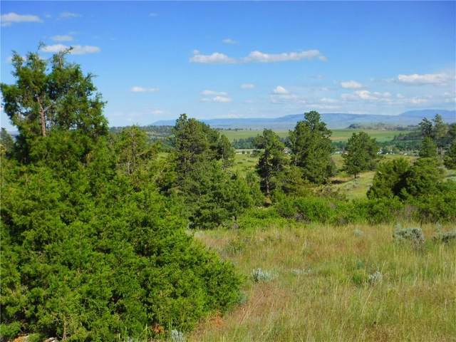 LOT 6 Monahan Road #6, Joliet, MT 59041 (MLS #263331) :: Search Billings Real Estate Group