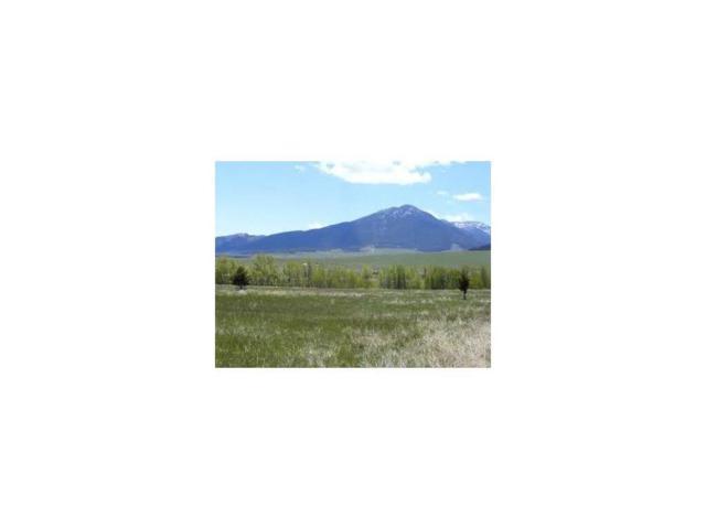 6 Elk Run Drive #6, Red Lodge, MT 59068 (MLS #263551) :: Realty Billings