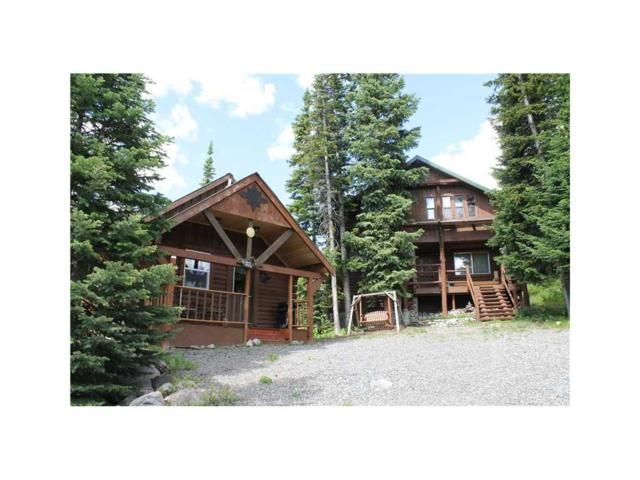 65 Sawmill Road, Cooke City, MT 59020 (MLS #263616) :: Search Billings Real Estate Group