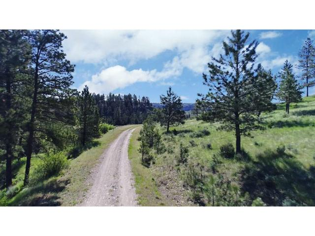 Lot 6 Bridle Canyon, Columbus, MT 59019 (MLS #270605) :: Search Billings Real Estate Group