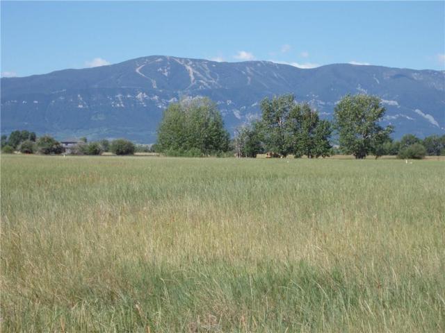 00 Horseshoe Trail, Red Lodge, MT 59068 (MLS #271875) :: Realty Billings