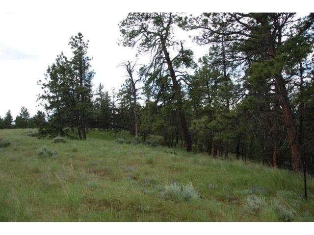 Lot 27 Pine Crest Ranch, Columbus, MT 59019 (MLS #272298) :: Search Billings Real Estate Group