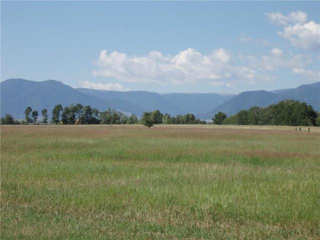 00 Horseshoe Trail, Red Lodge, MT 59068 (MLS #273515) :: Realty Billings