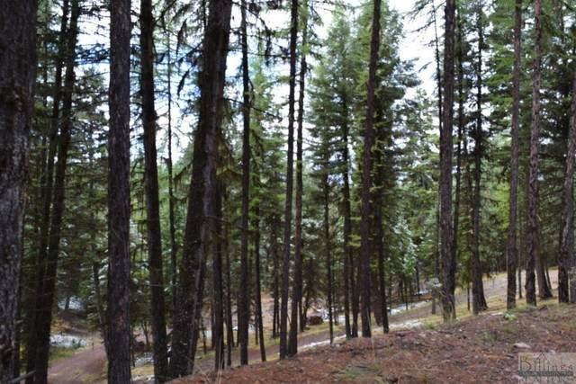 378 Bobcat Ln, Seeley Lake, Other-See Remarks, MT 59868 (MLS #279262) :: The Ashley Delp Team