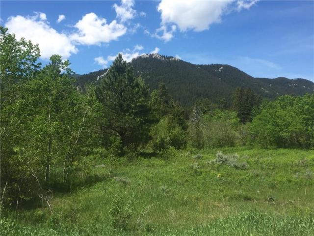 Lot 14 Beaver Trail Loop, Red Lodge, MT 59068 (MLS #280339) :: Realty Billings