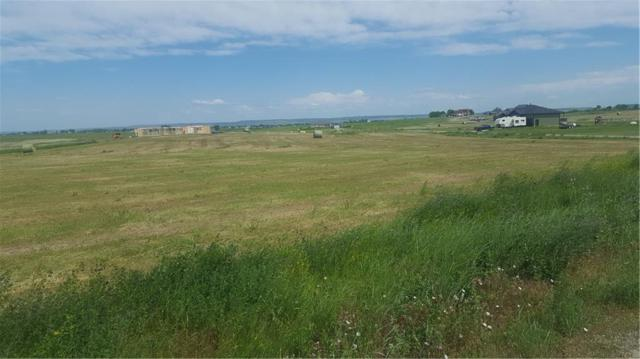7421 Lena Kay Drive, Shepherd, MT 59079 (MLS #280657) :: Search Billings Real Estate Group