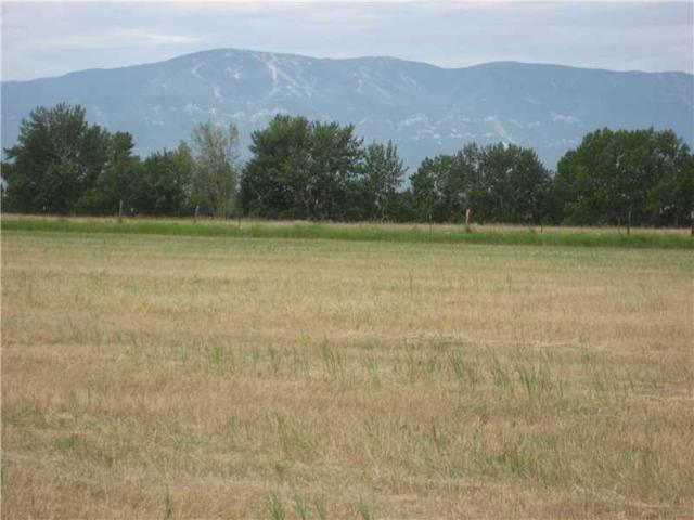 8 Horseshoe Trail, Roberts, MT 59070 (MLS #281608) :: Realty Billings