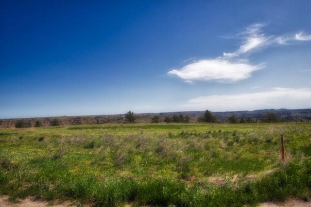13555 N Ranchairo Road, Molt, MT 59057 (MLS #284385) :: The Ashley Delp Team