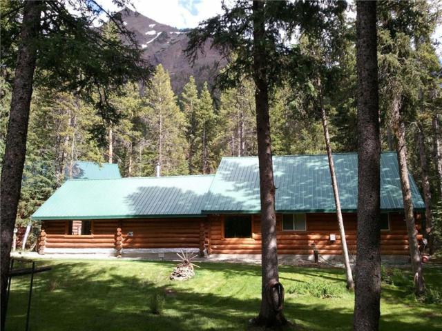 NDA Bannock Trail, Cooke City, MT 59020 (MLS #284435) :: MK Realty