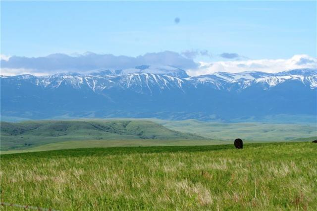 Lot 3 Patterson Ranch Rd. Road, Columbus, MT 59019 (MLS #284517) :: Realty Billings