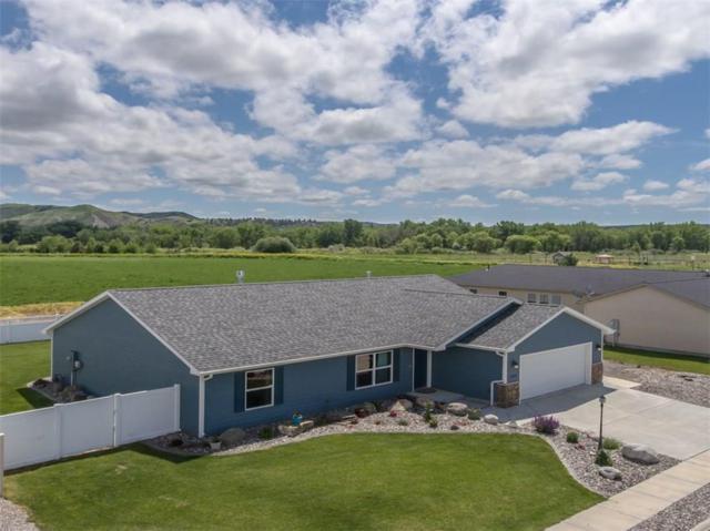 1529 Prairie Meadow Lane, Billings, MT 59101 (MLS #285863) :: The Ashley Delp Team