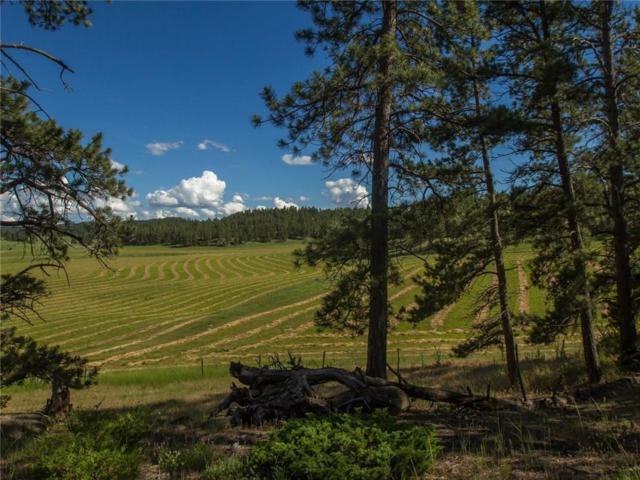 1003 N Goulding Creek Road N, Roundup, MT 59072 (MLS #286401) :: The Ashley Delp Team