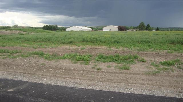 Lot 7 Sanctuary Estates Drive, Billings, MT 59101 (MLS #286430) :: Realty Billings