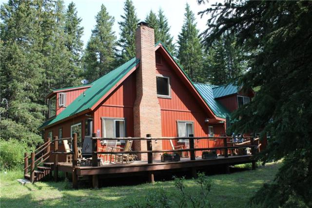 71 Bannock Trail, Cooke City, MT 59081 (MLS #287167) :: The Ashley Delp Team