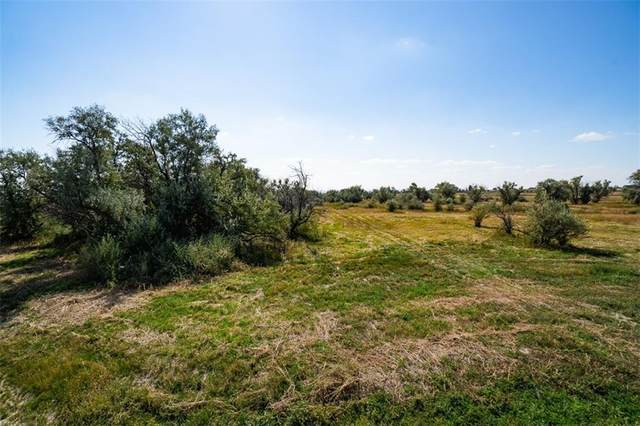 6526 Chimney Rock Drive, Billings, MT 59106 (MLS #288557) :: Search Billings Real Estate Group