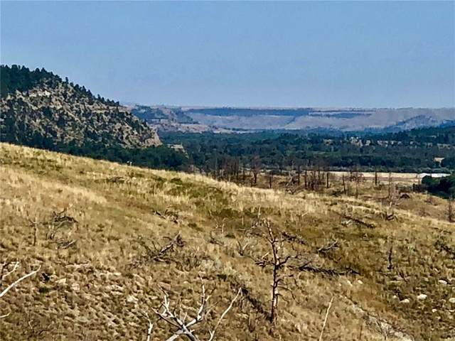 TBD Coyote Pass Road, Columbus, MT 59019 (MLS #294874) :: MK Realty