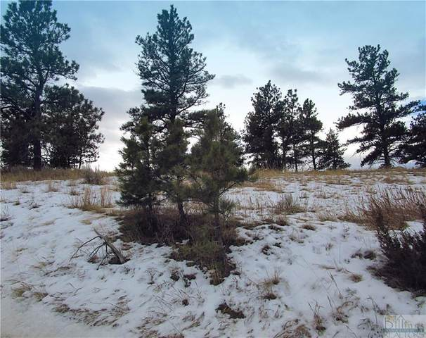 Lot 11 Whispering Pines Subd., Columbus, MT 59019 (MLS #302394) :: The Ashley Delp Team