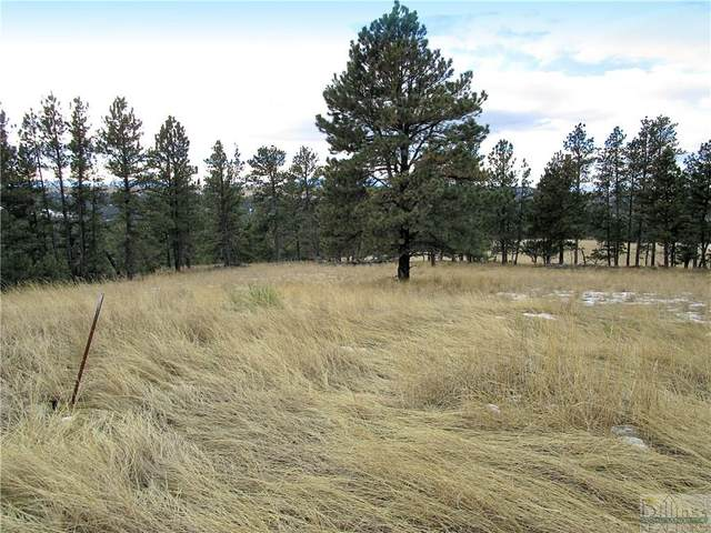 Lot 13 Whispering Pines Subd., Columbus, MT 59019 (MLS #302396) :: The Ashley Delp Team