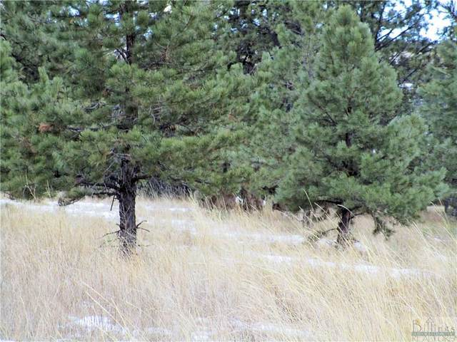 Lot 14 Whispering Pines Subd., Columbus, MT 59019 (MLS #302397) :: The Ashley Delp Team