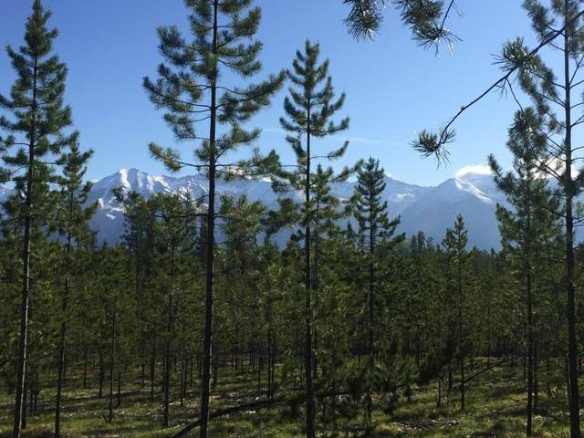 Lot 2 A Elk Creek Preserve, Condon, Other-See Remarks, MT 59826 (MLS #302938) :: The Ashley Delp Team