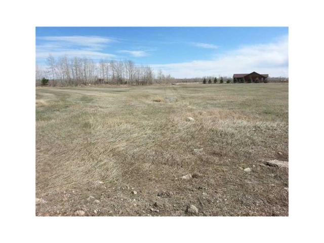 3D Pepsi Drive 3D, Red Lodge, MT 59068 (MLS #251357) :: Realty Billings