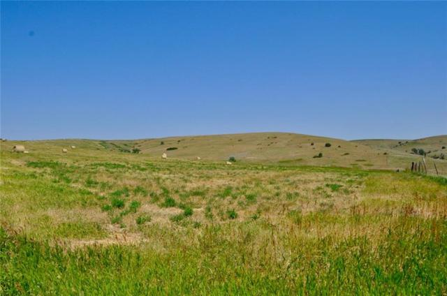 00 Paterson Ranch Road, Boyd, MT 59054 (MLS #260478) :: Realty Billings