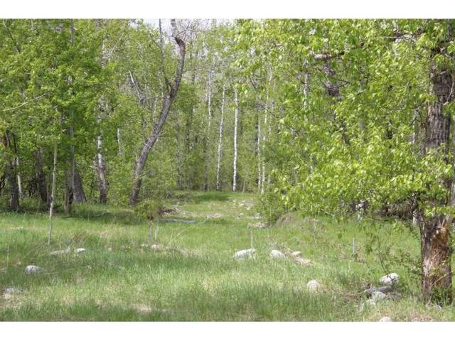7 Woodlands Drive #7, Red Lodge, MT 59068 (MLS #262545) :: Realty Billings
