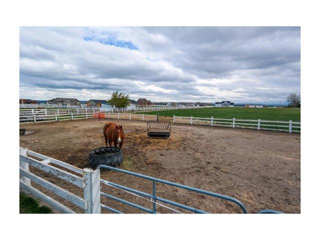 5546 Neibauer Road, Billings, MT 59106 (MLS #271396) :: Search Billings Real Estate Group