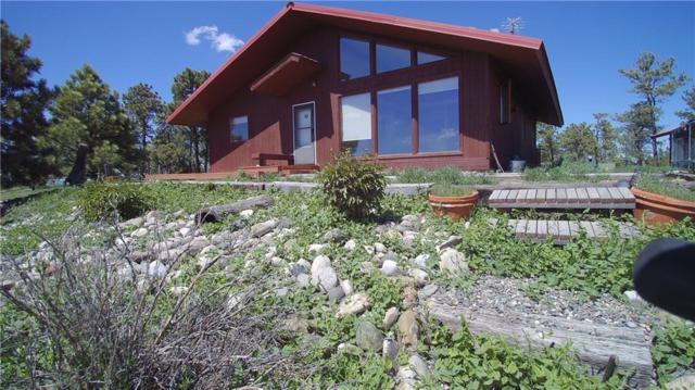 11335 Peaceful Plateau Trail, Shepherd, MT 59079 (MLS #280818) :: The Ashley Delp Team