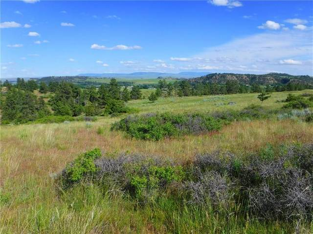 LOT 1 Monahan #1, Joliet, MT 59041 (MLS #263318) :: Search Billings Real Estate Group