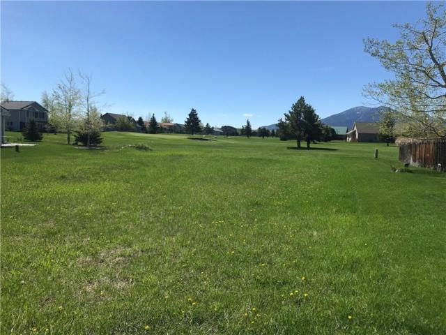Lot 20 Upper Continental Drive, Red Lodge, MT 59068 (MLS #282158) :: Search Billings Real Estate Group