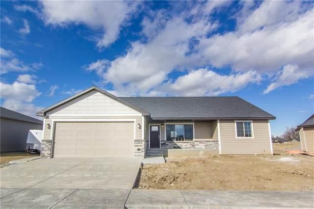 1307 Jean Avenue, Billings, MT 59105 (MLS #301345) :: Search Billings Real Estate Group