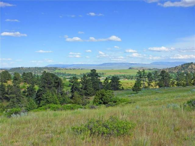 LOT 5 Monahan Road #5, Joliet, MT 59041 (MLS #263327) :: Search Billings Real Estate Group